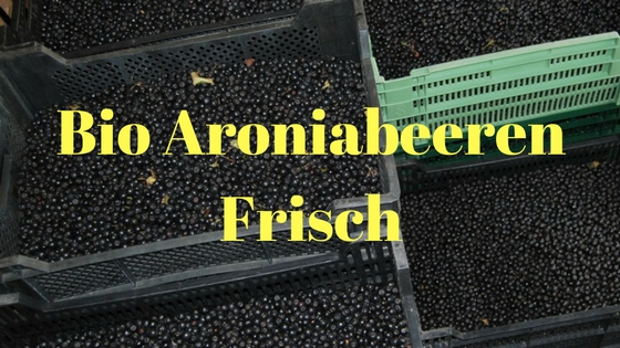 frische bio aroniabeeren direkt von der aronia plantage schwarmstedt. Black Bedroom Furniture Sets. Home Design Ideas