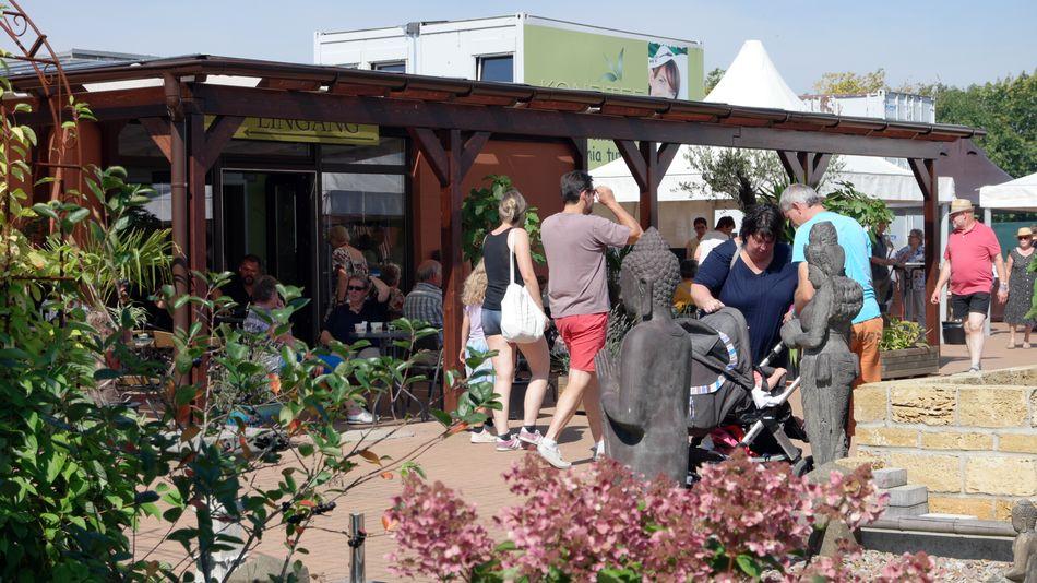aroniafest 2017 erntefest auf der bio aronia plantage in schwarmstedt. Black Bedroom Furniture Sets. Home Design Ideas