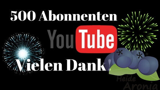 500 Youtube Abonnenten