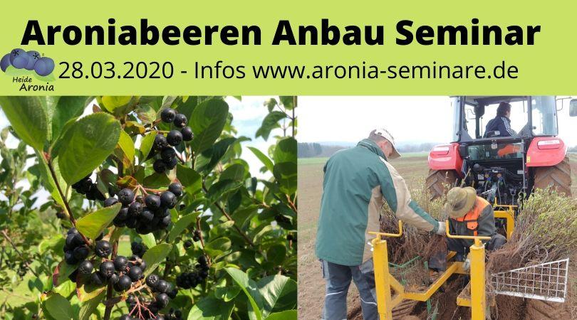 Aronia Beeren Anbau Seminar 2020